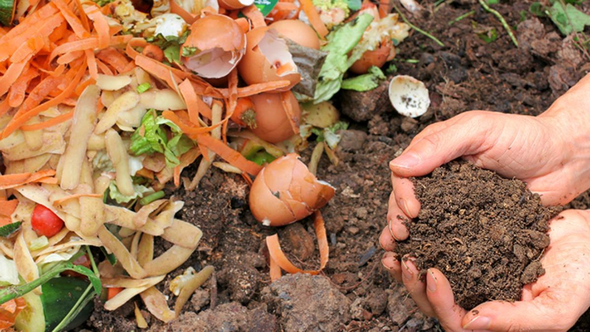 compost hands dirt