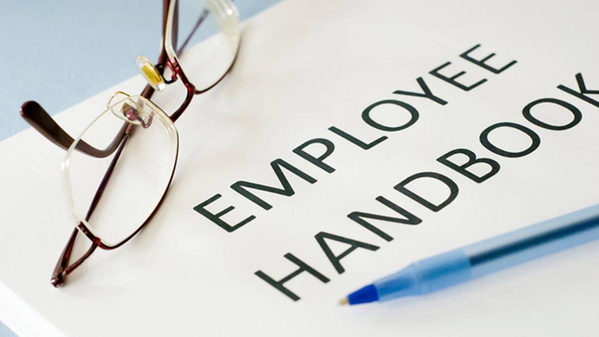 What To Put In Your Employee Manual - Employee handbook template illinois