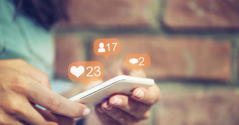 social media harvey