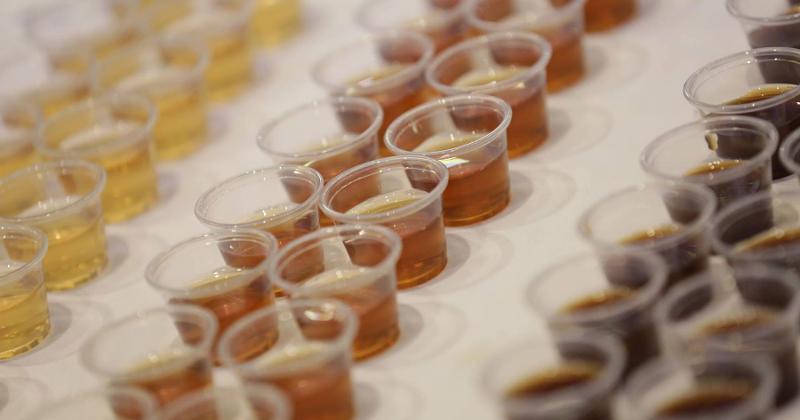 flavorcon drink samples