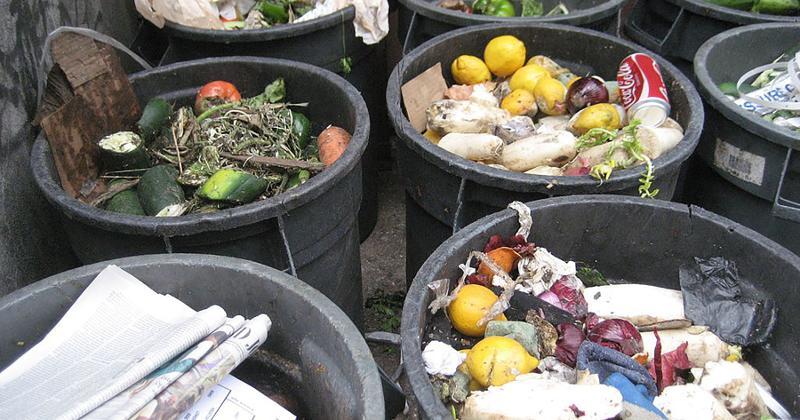 garbage food waste trash