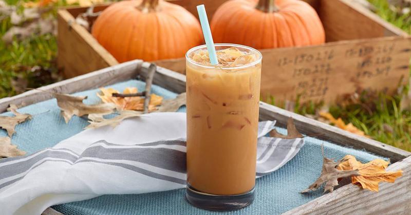 caribou iced pumpkin chai