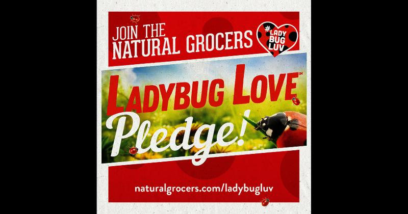 natural grocers ladybug love