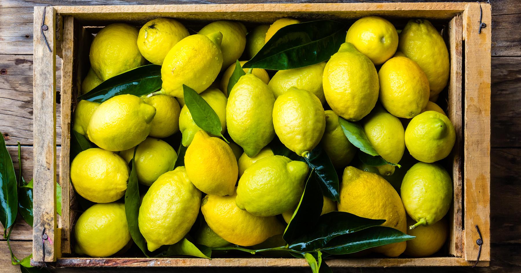 freshly harvested lemons