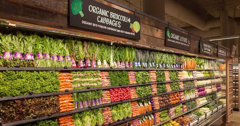 lazy acres organic produce