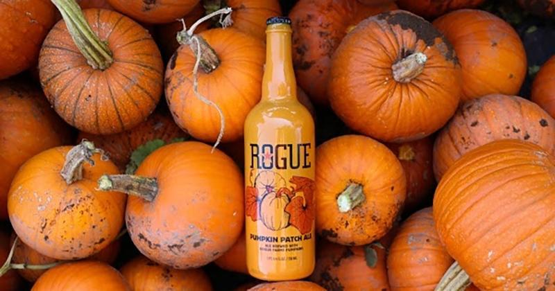 rogue pumpkin beer