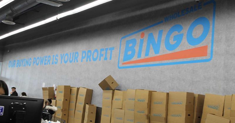 bingo power profit