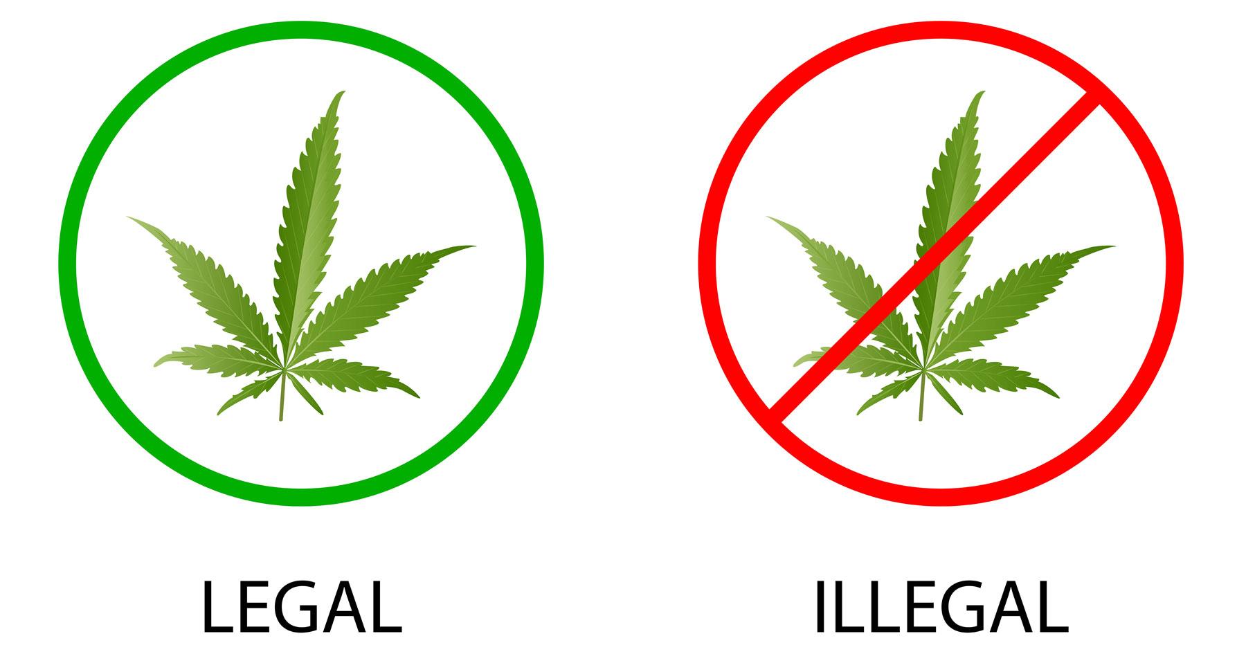 legal v illegal marijuana