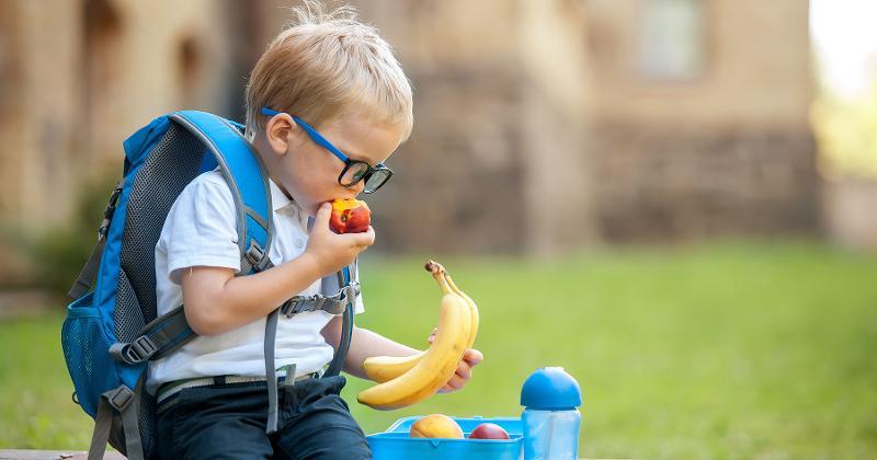 school boy fruit