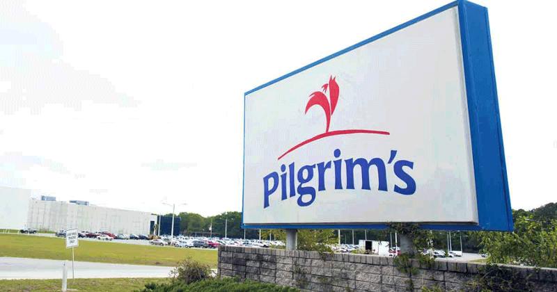 Pilgrims Poultry