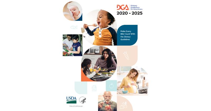 DGA book cover