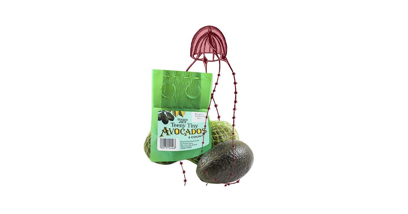 trader joes teeny avocado