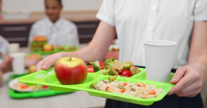 Student holding a lunch tray in the cafeteria