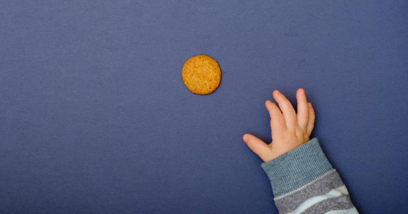 Kid reaching for cracker
