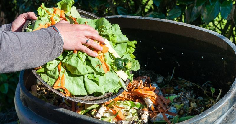 A person composting kitchen waste
