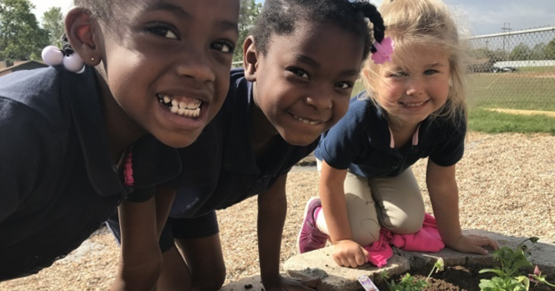 Sprouts Healthy Communities Foundation supports school gardens