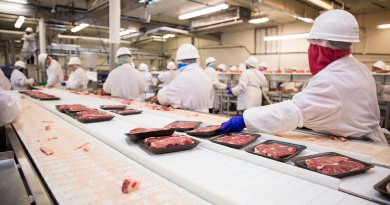 beef processing facility