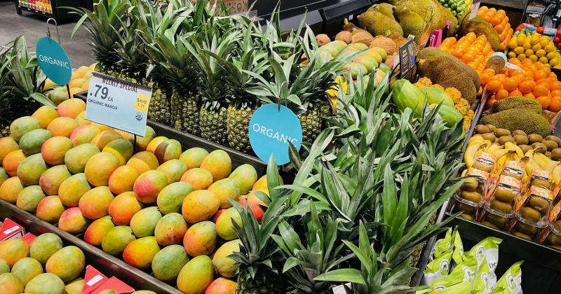 GreenWise Market Tampa produce