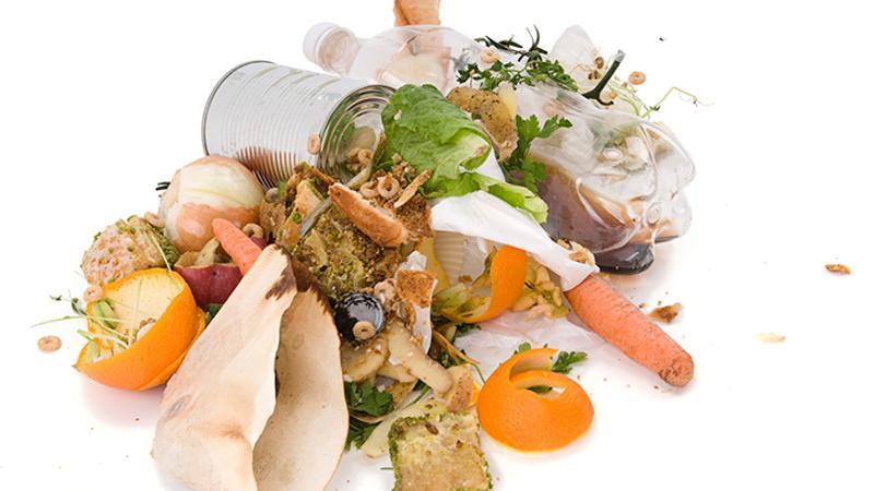 food scraps waste