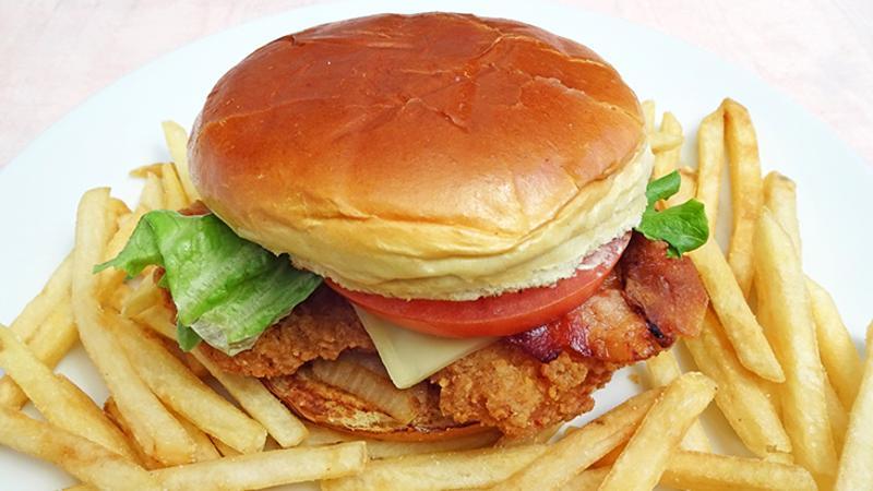 fried chicken sandwich fries