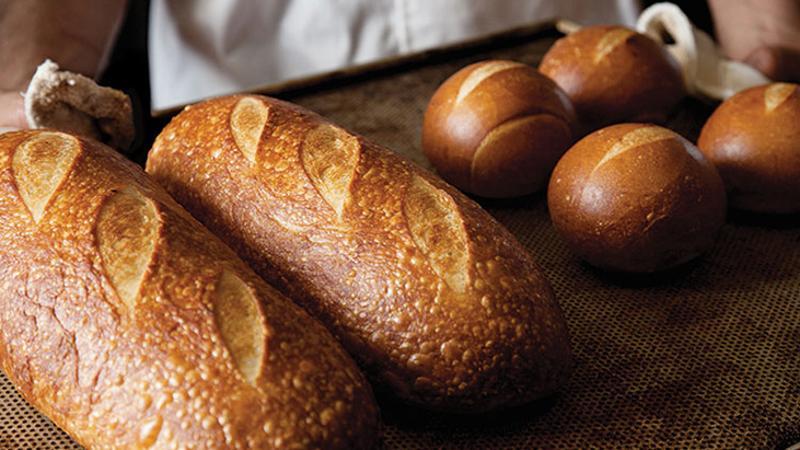 panera bread tray