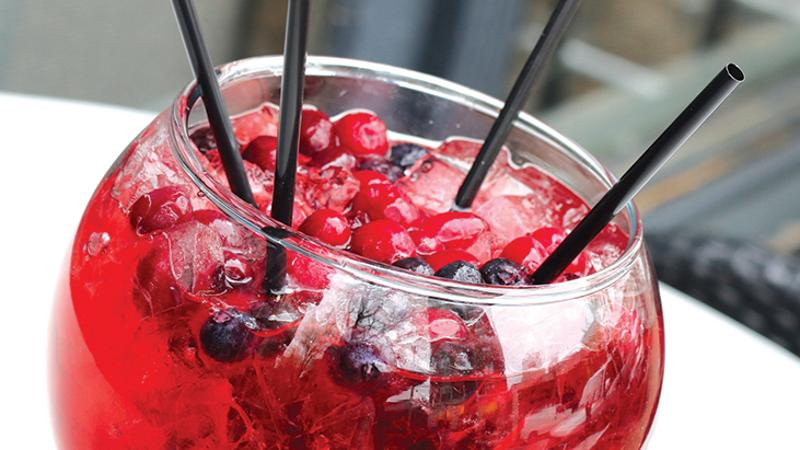 sub zero antioxidant goblet