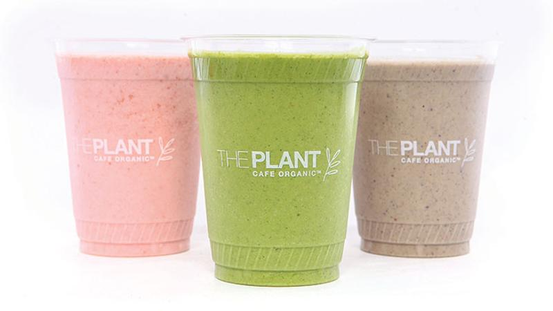 the plant smoothies
