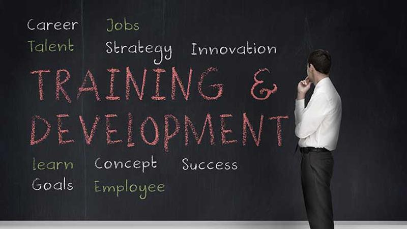 training career development