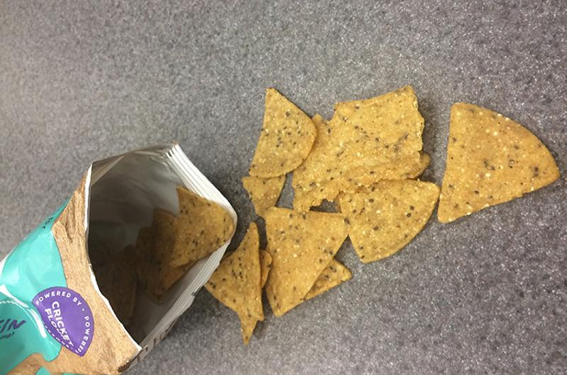 cricket chips