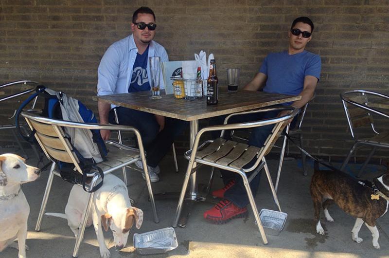 dogs restaurant patio