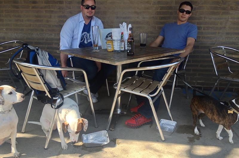 dog restaurant patio