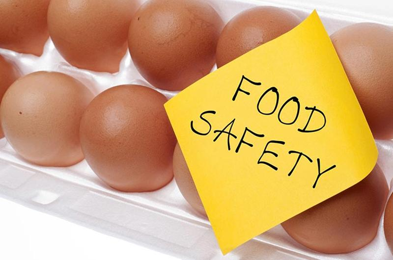 eggs carton food safety