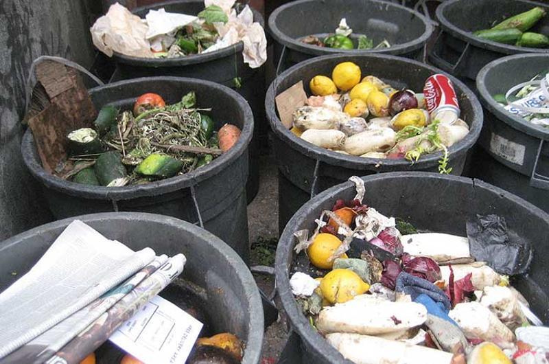 food waste trash cans