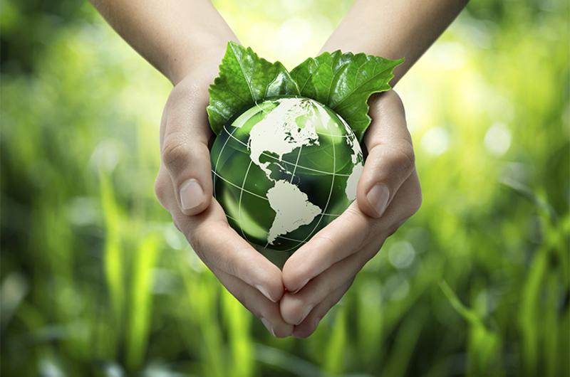 green world hands sustainability