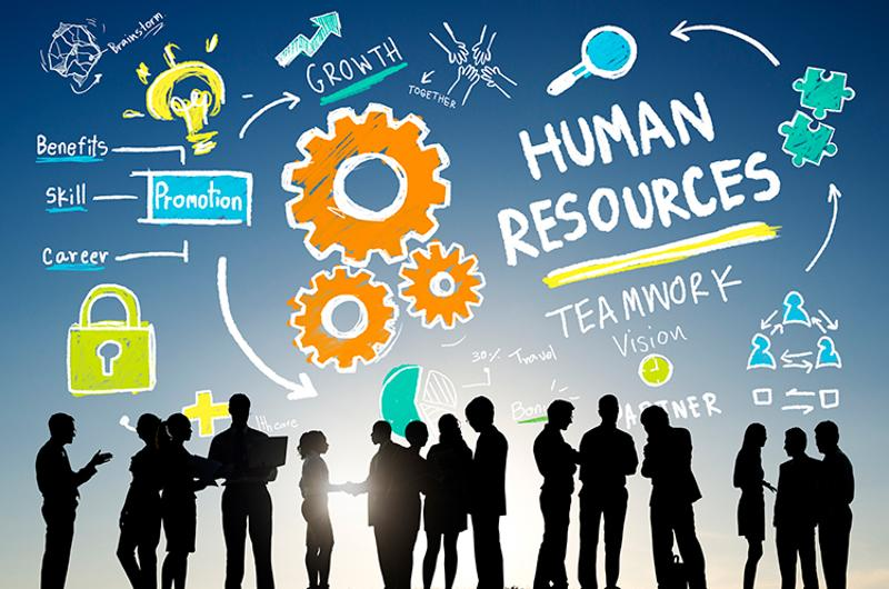human resources teamwork