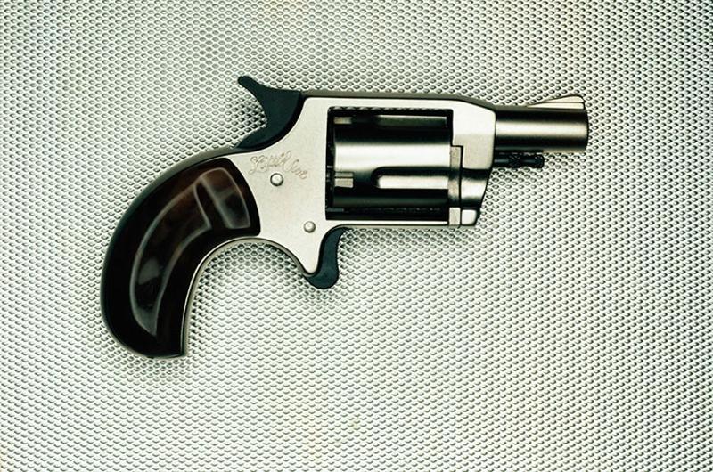 pistol handgun gun