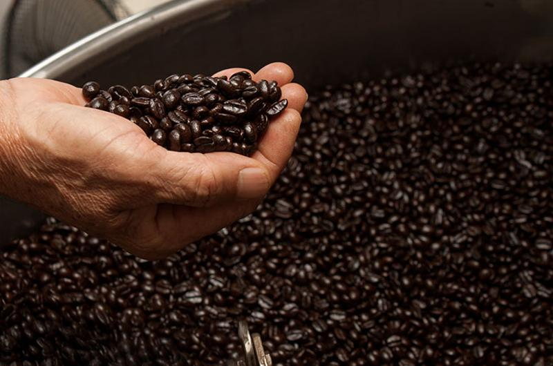 roasted coffee beans hand