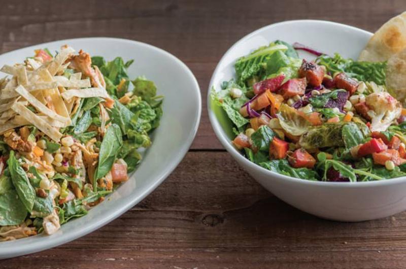 sharkys salads