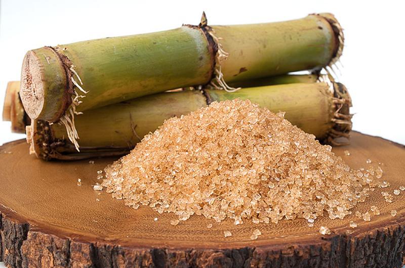 sugar sugarcane