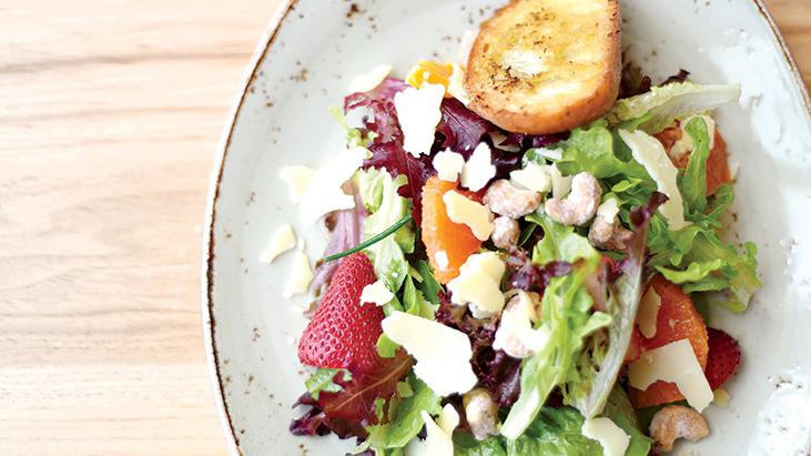 harvest big salad