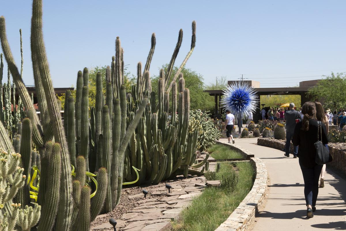 Desert Botanical Garden Tour Restaurant Leadership Conference, RLC