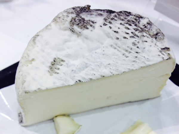 cow goat milk cheese
