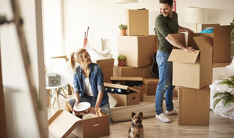couple and dog moving in