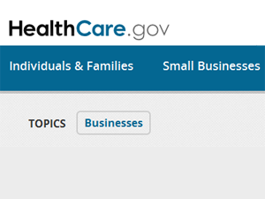 Small business option to buy insurance for employees online pushed back a year