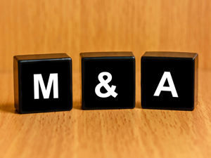m&a year in review