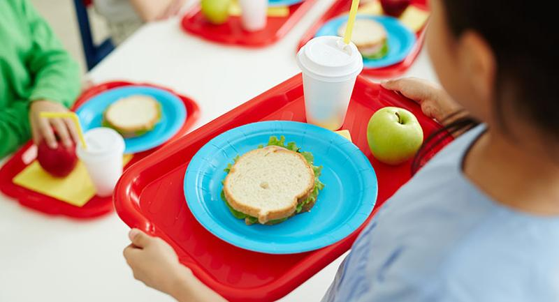 colorful student lunch tray