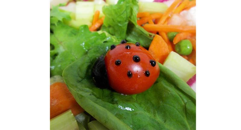 ladybug provo high
