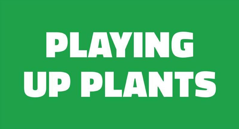 playing up plants
