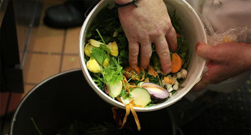 vegetable scraps kitchen waste trash