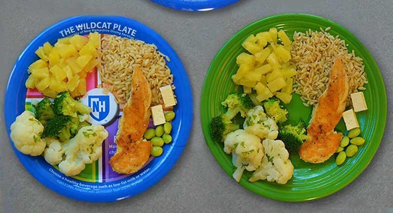 wildcat plate